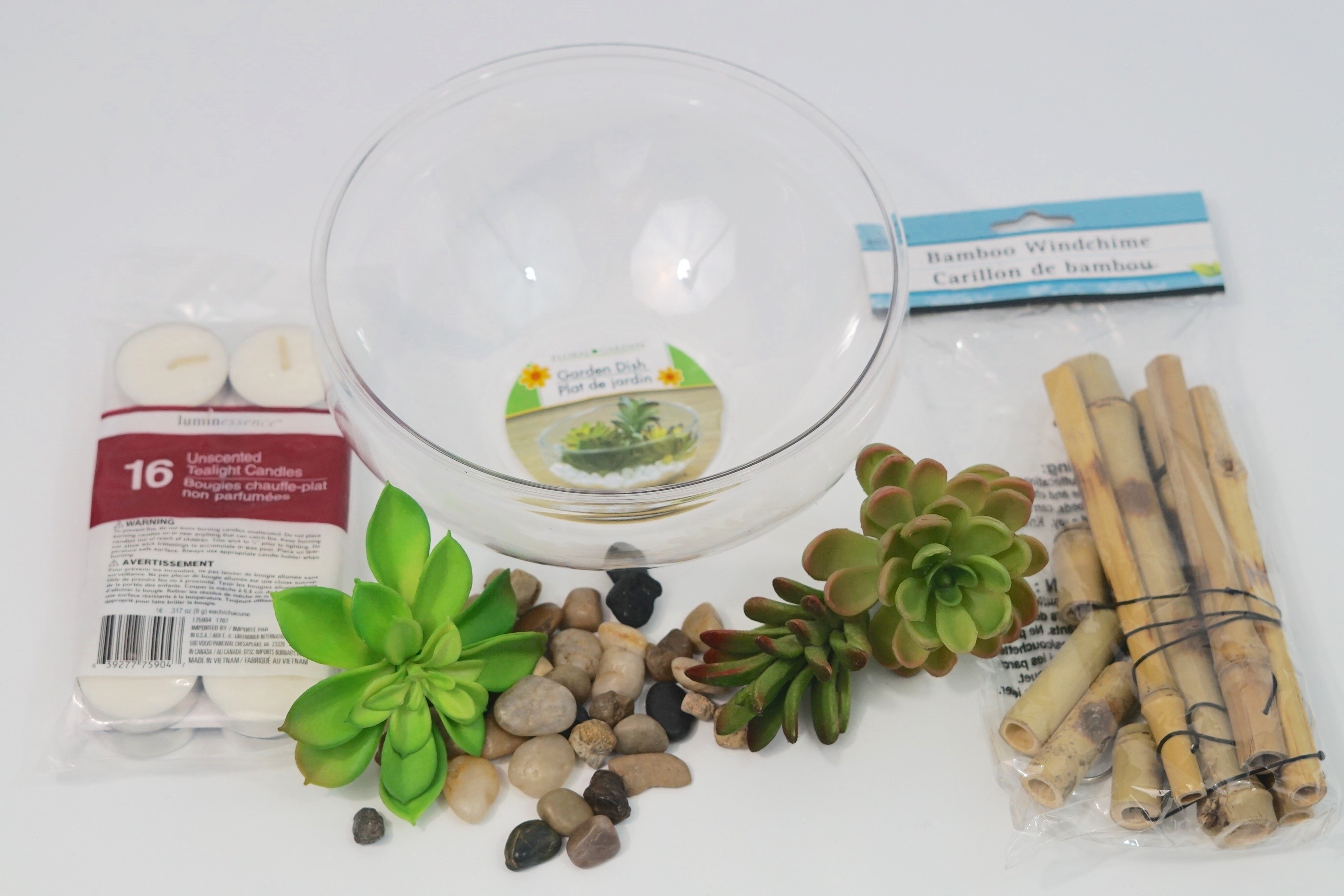 Dollar Tree DIY Simply Succulent Centerpiece for Your Event or Home